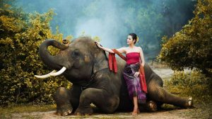 девушка со слоном в Таиланде
