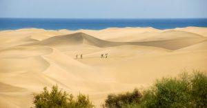 Дюны Маспаломас в Испании фото