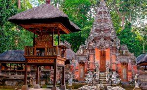 Лес обезьян на Бали фото