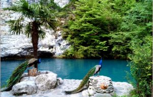 летний отпуск в Абхазии