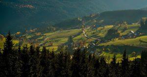 Чёрный лес (находится в регионе Шварцвальд)
