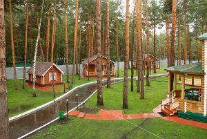 база отдыха Ленинградская область фото