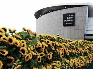 музей ВАн Гога фото снаружи 2020
