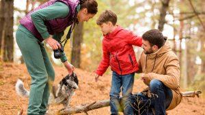 отдых с семьей в осеннем лесу