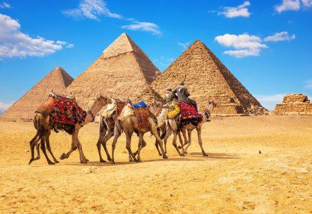 рейтинг страховок для Египта